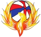 Oakland County Firebirds logo