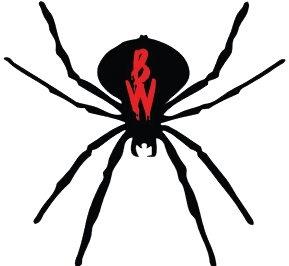 Birmingham Black Widows logo