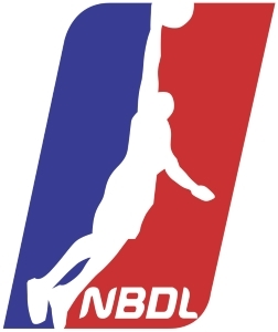 National Basketball Development League logo